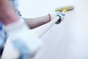 Interior and Exterior Painting Ogden Brush Brothers Painting